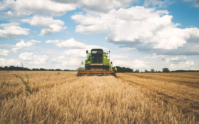 Pinksteren: de oogst van wat Jezus probeerde te zaaien